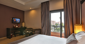 Double Room with Opera / Pool View